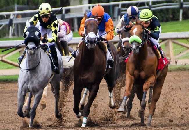 Woodbine's Mohawk Million Race Fully Booked