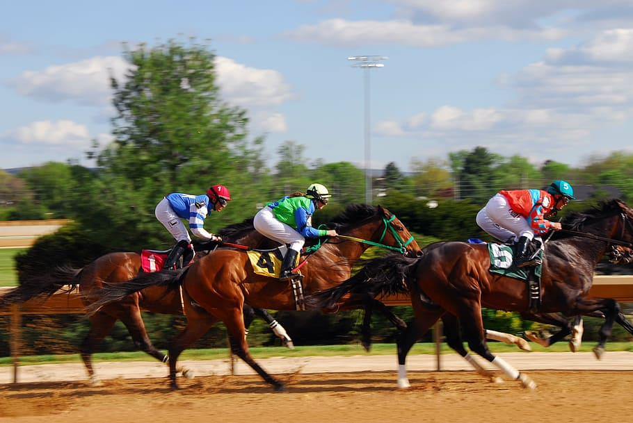 Woodbine Mohawk Park Ready For Million Race