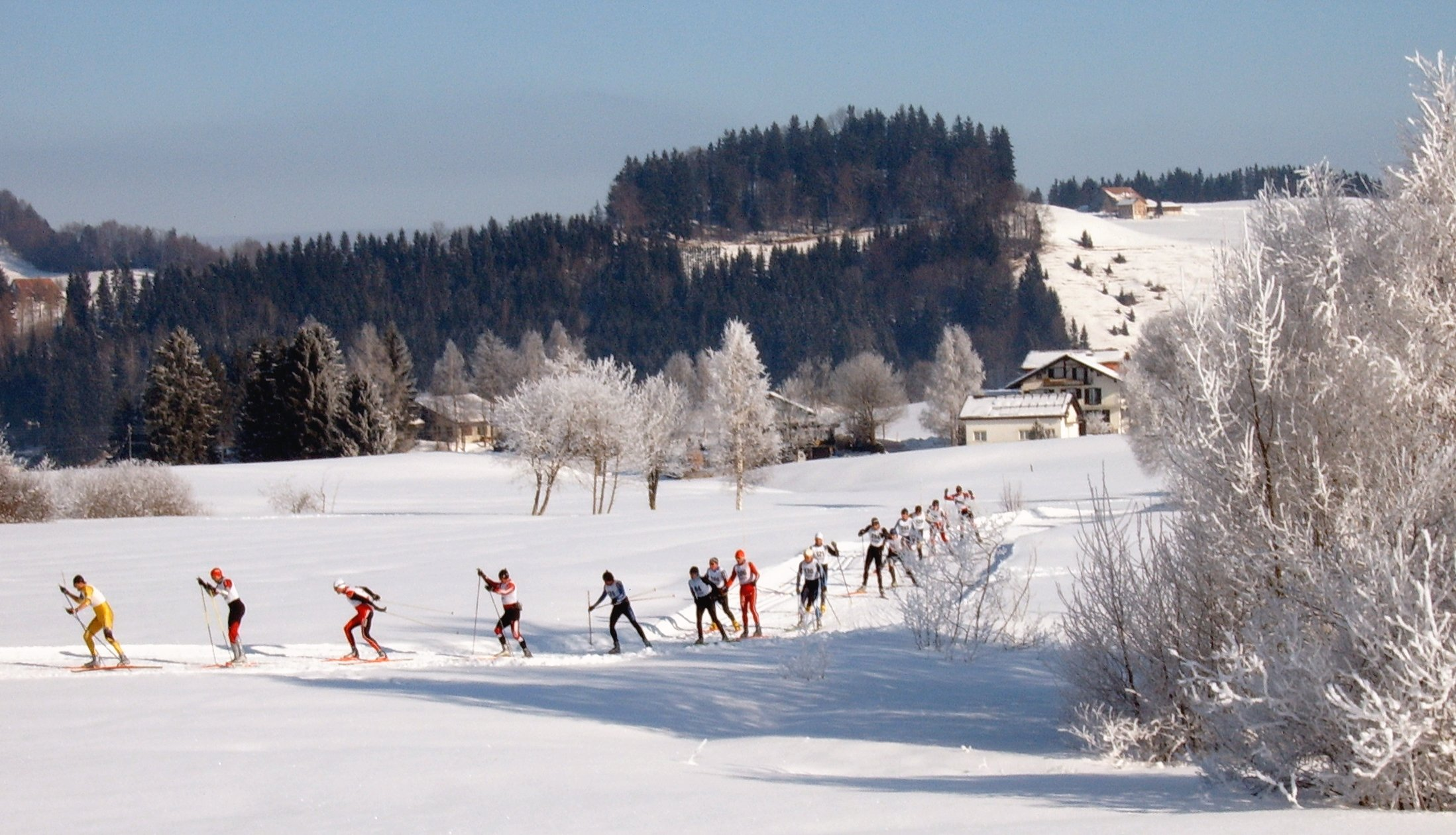 Canadian Skiers