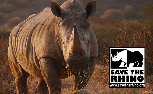 Microgaming offers assistance to the Save The Rhino fund based in Africa