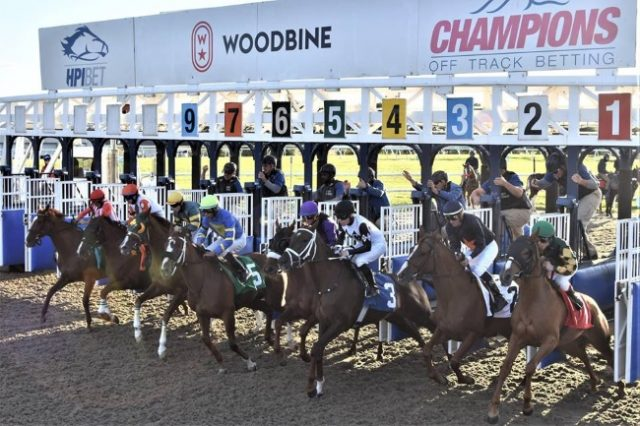 Woodbine Brings Back Friday Twilight Racing