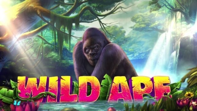 iSoftBet Swings Away With Wild Ape Slot