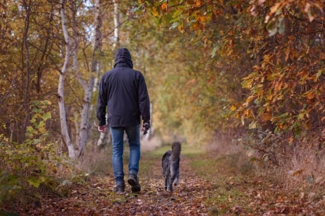The Surprising Benefits Of Walking A Dog