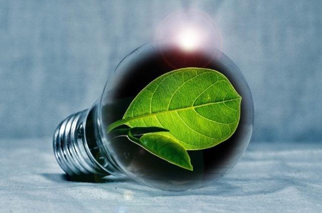 Communities Are Choosing Greener Energy