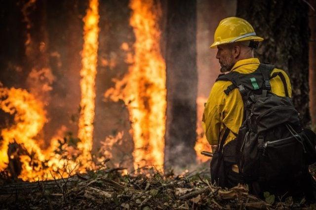 Casino Mogul Donates Millions To Australian Wildfire Relief