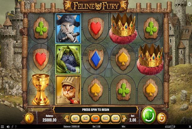A New Feline Fury Slot Released By Play'n GO
