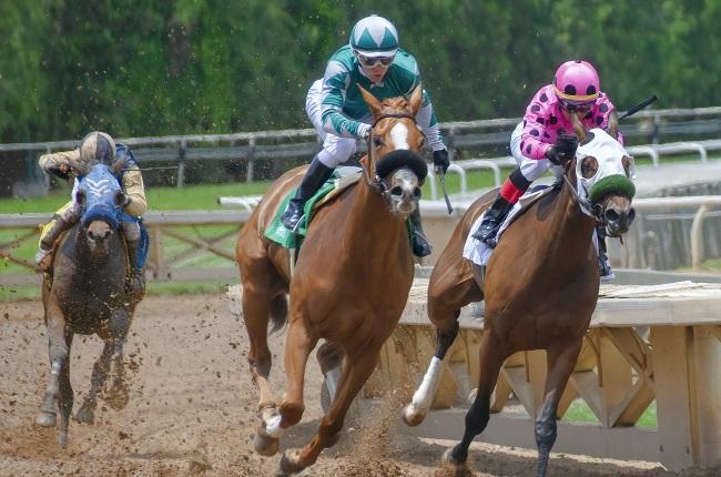 Bettor Turns $0.50 Racing Bet Into $500k