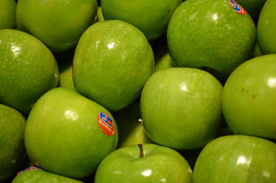 Fruit Stickers Are Global Warming Culprits