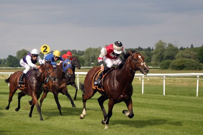 Live Races At Kawartha Downs Come June 6th
