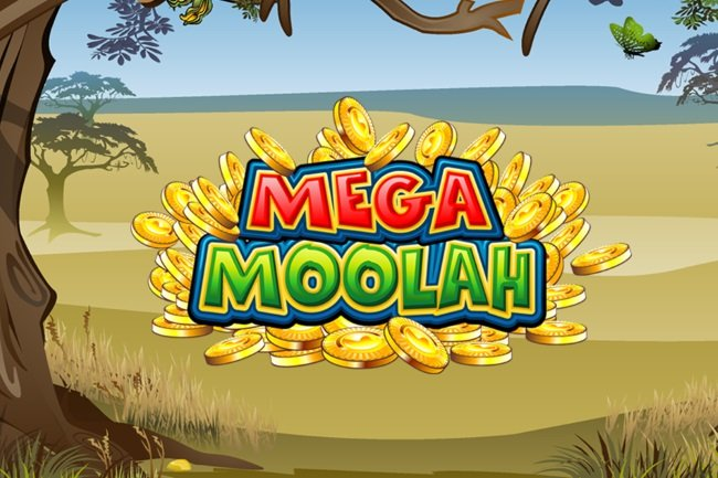 Canadian Hits the Mega Moolah Slot's Jackpot